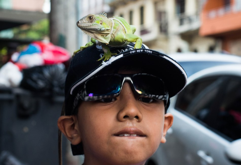Boy with pet Iguana